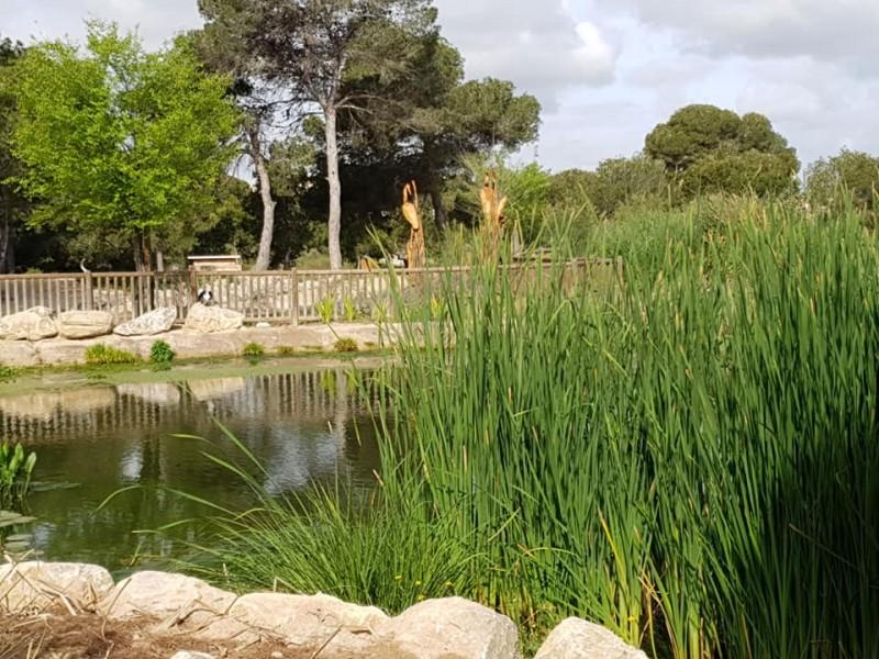 Parque El Recorral in Rojales looking pretty for spring