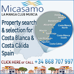 Micasamo Banner 290